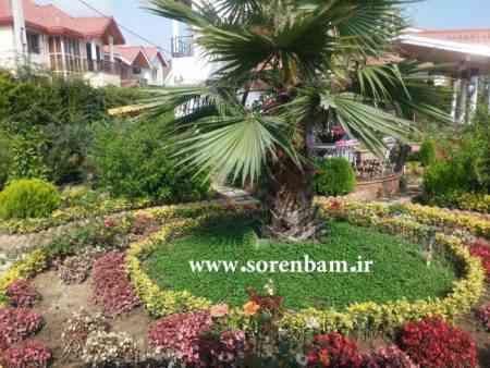 طراحی فضای سبز شهری طراحی باغچه اجرای فضای سبز