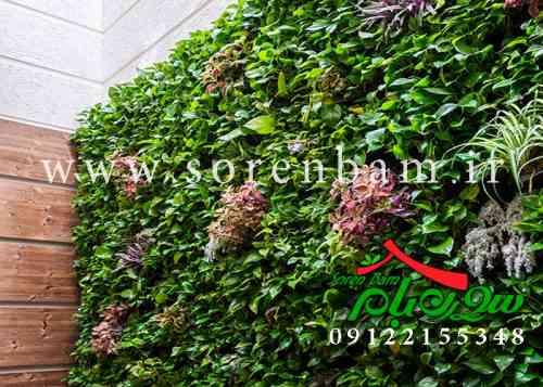 انواع دیوار سبز