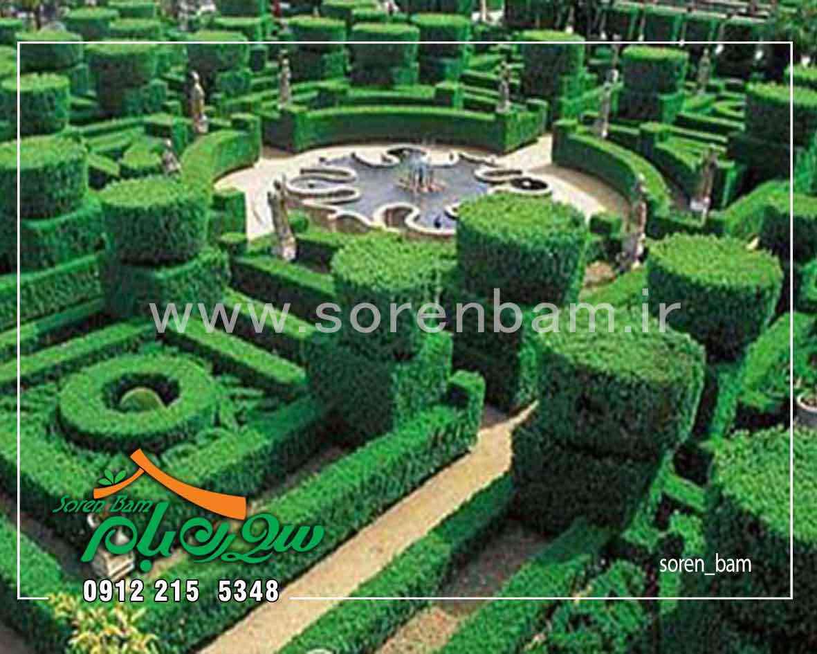 طراحی و اجرای باغ مصری