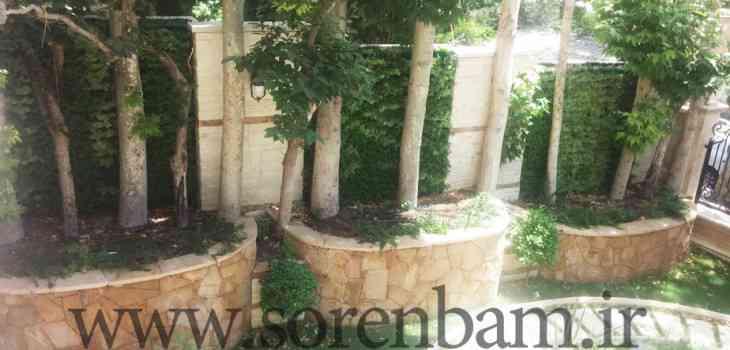 طراحی و اجرای دیوار سبز سورن بام|خدمات