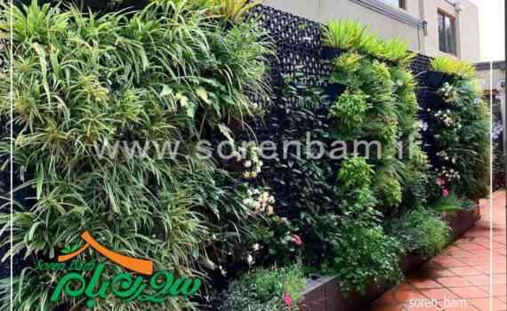 اجرای دیوار سبز ، گرین وال