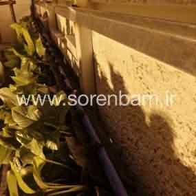 دیوار سبز کامرانیه |مشاوره و طراحی| سورن
