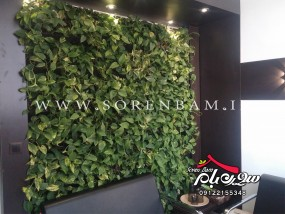 دیوار سبز داخلی و خارجی