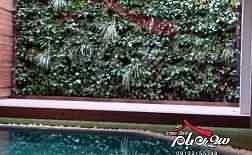 دیوارسبز ، باغ سبز عمودی