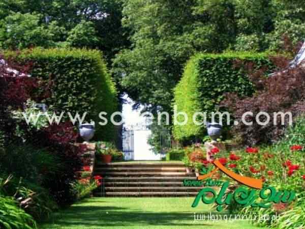 چمن کاری|محوطه سازی|اجرای فضای سبز| محوطه سازی| باغ سازی مشرقی
