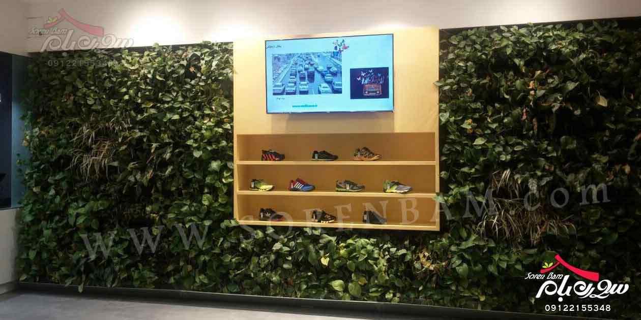 دیوارسبز هوشمند|اجرای دیوار سبز|پوشش سبز| باغ عمودی | green wall