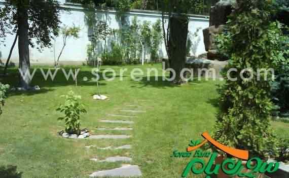 چمن رولی | کاشت چمن|کاشت فضای سبز| گیاهان سبز