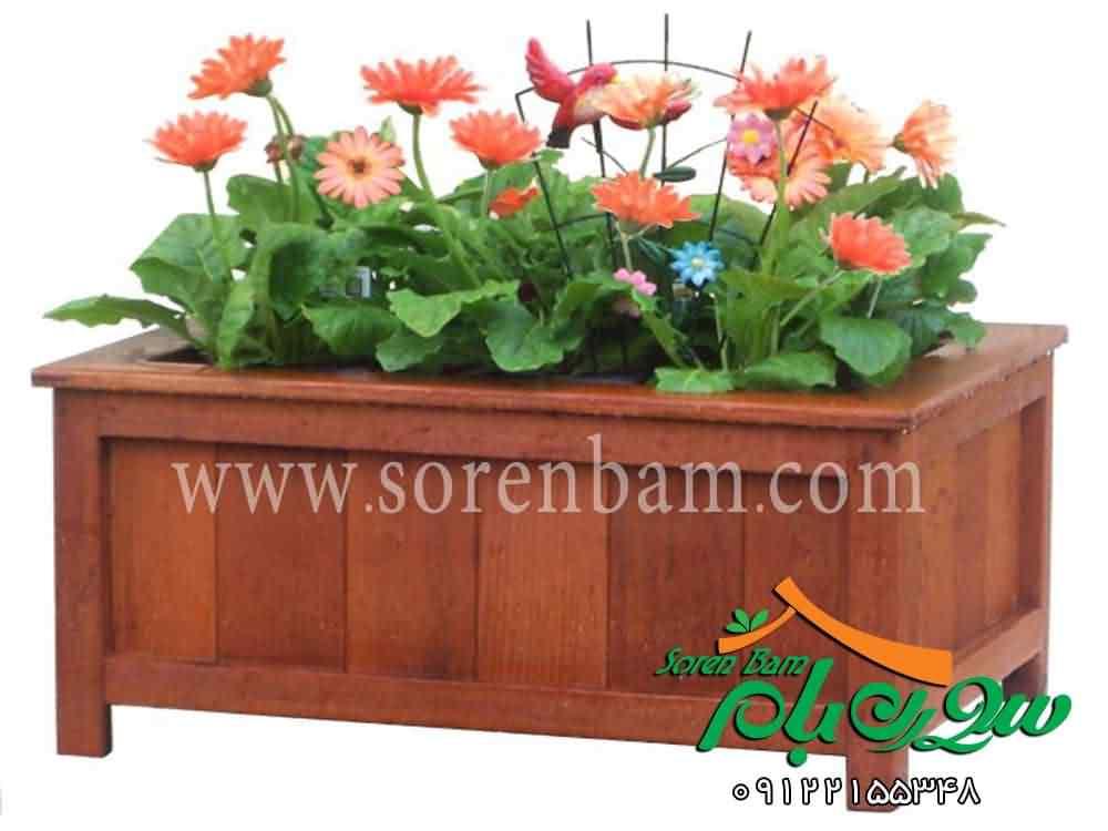 نگهداری گلهای آپارتمانی