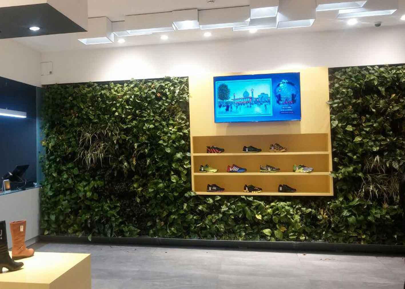 دیوار سبز کفش ملی