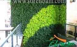 پوشش گیاهی دیوار سبز
