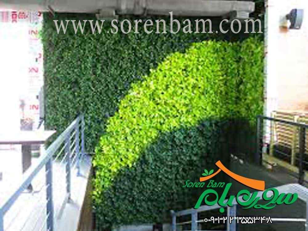 اجرای دیوار سبزطبیعی