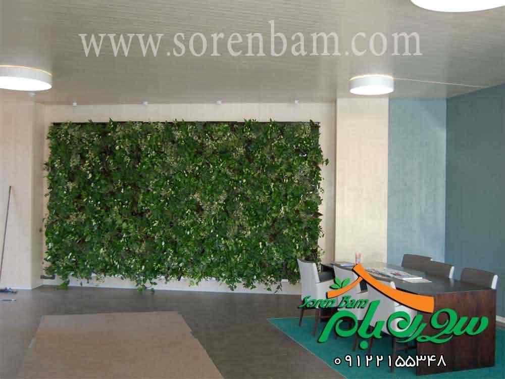 دیوار سبز تخصصی| دیوار سبز|اجرای دیوار سبز|نمای سبز