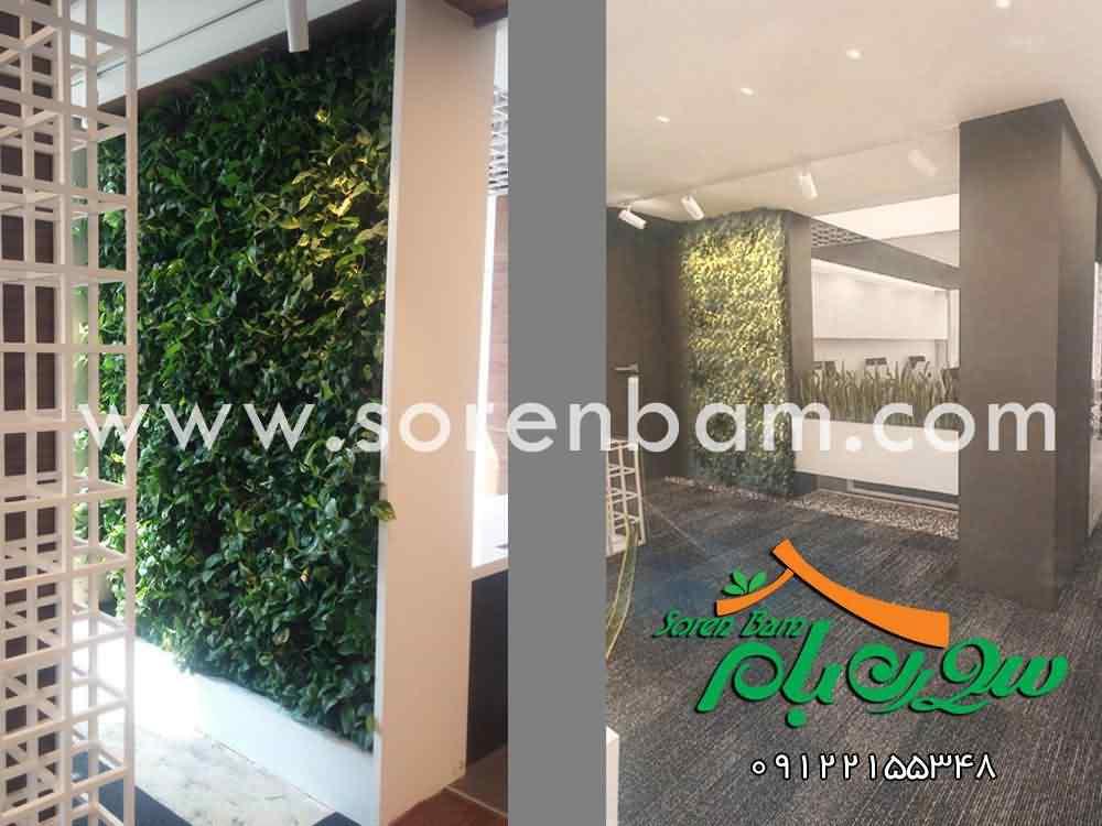 دیوار سبز  دیوار زنده  پوشش سبز  گیاهان دیوار سبز