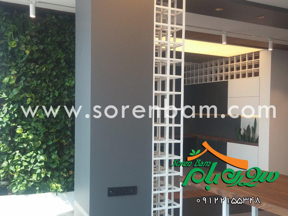 اجرای دیوار سبز پوشش سبز  باغ عمودی   green wall
