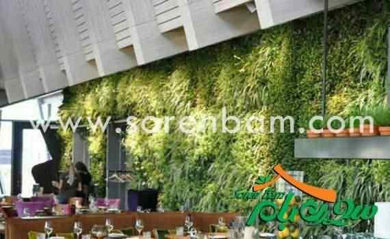 اجرای دیوار سبز فلورانس