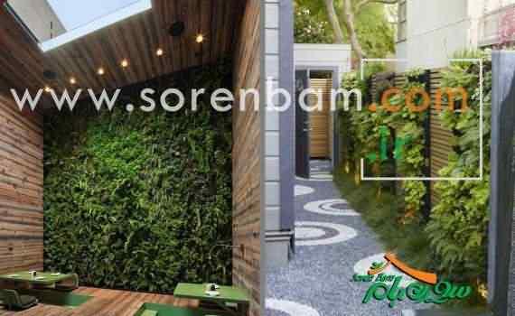 اجرای دیوار سبز |انواع دیوار سبز |اجرای دیوار سبز|دیوار سبز