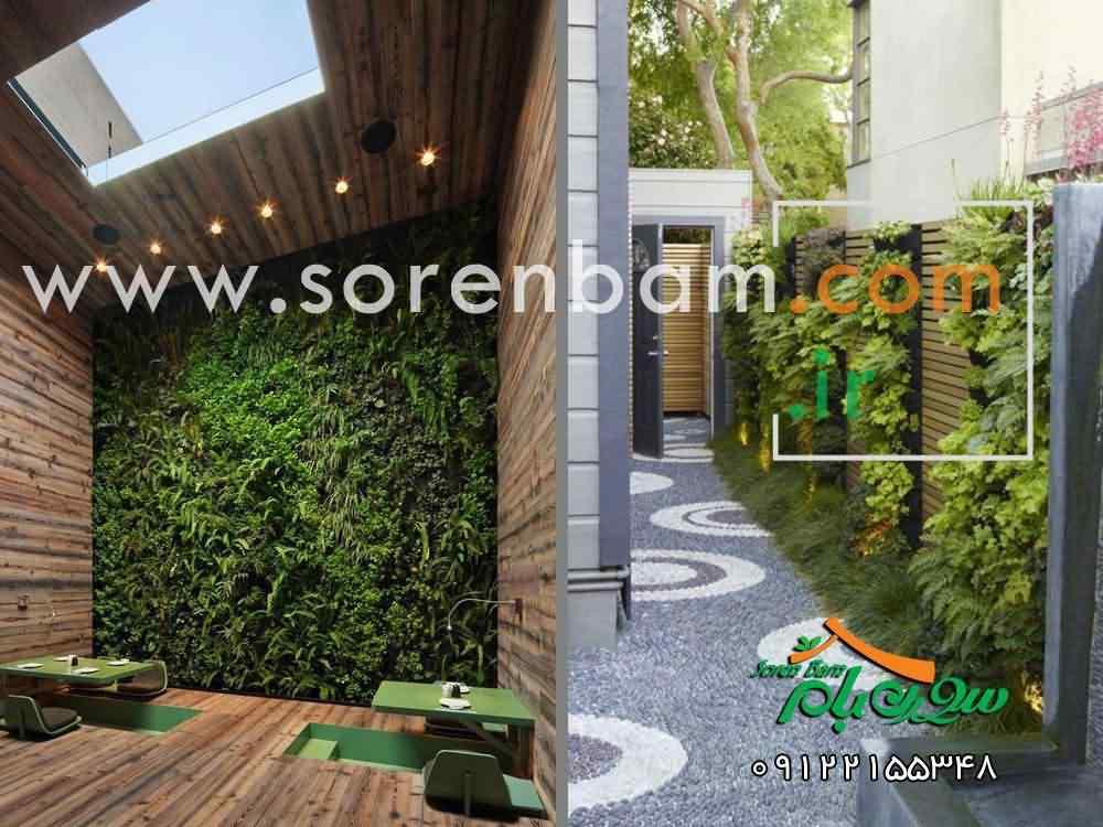 اجرای دیوار سبز  انواع دیوار سبز  اجرای دیوار سبز دیوار سبز