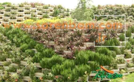 اجرای فضای سبز شهری
