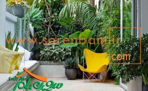 محوطه سازی فضای سبز | چمن کاری