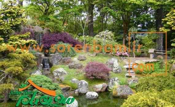 طراحی کاشت گیاهان در فضای سبز