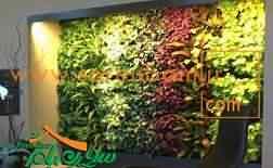 اجرای دیوار سبز در مشهد