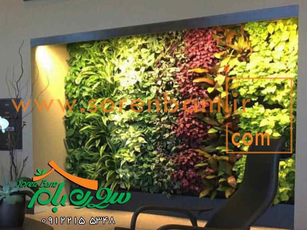دیوار سبز هیدروپونیک دیوار زندگی