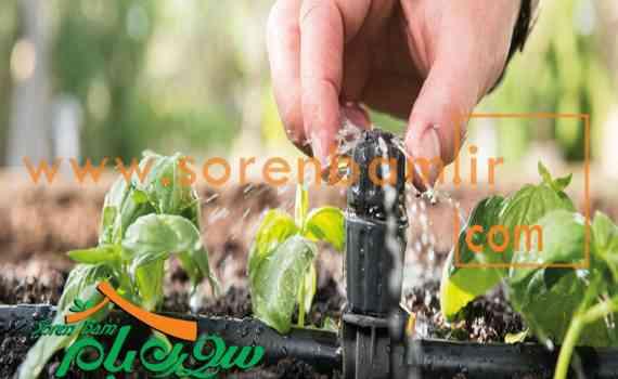 آبیاری قطره ای فضای سبز