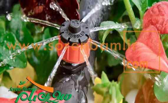 اجرای آبیاری قطره ای در باغ