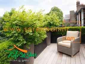 گیاهان مناسب بام سبز