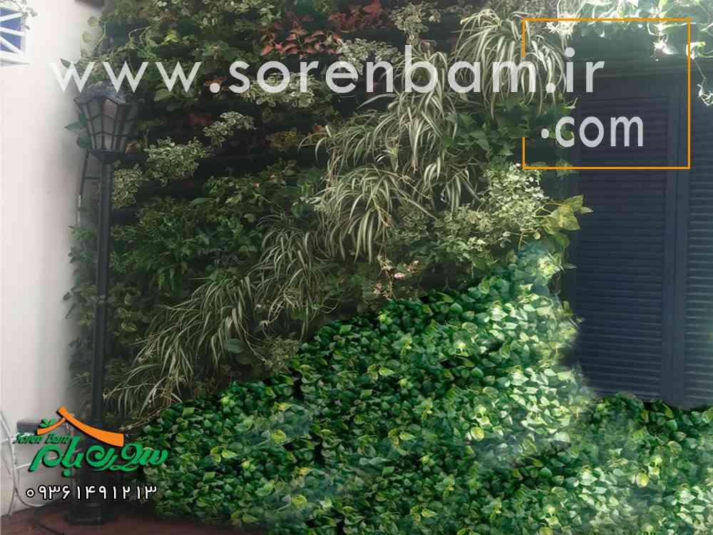 طراحی دیوار سبز ،اجرای دیوار سبز