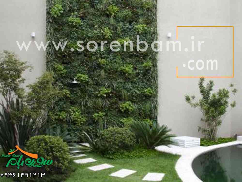 روش ساخت دیوار سبز
