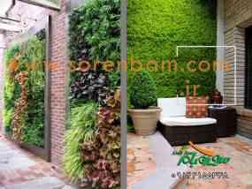 طراحی و نگهداری دیوار سبز