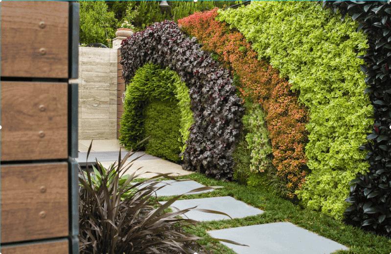 کاشت گل و گیاهان در دیوار سبز