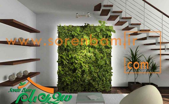 دیوار سبز،دیوار سبز در خانه