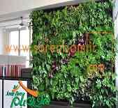 فضای سبز عمودی، دیوار سبز