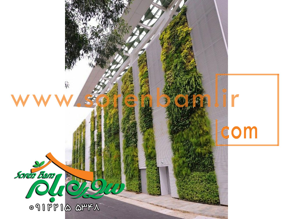 طراحی دیوار سبز ، فضای سبز