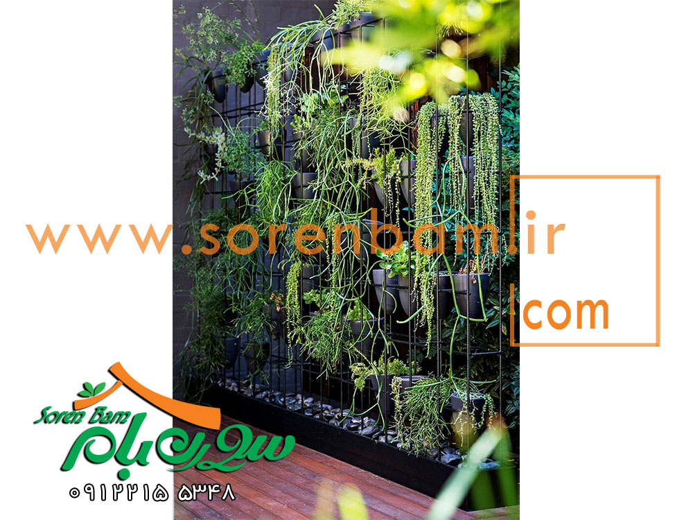 دیوار سبز و پوشش گیاهی