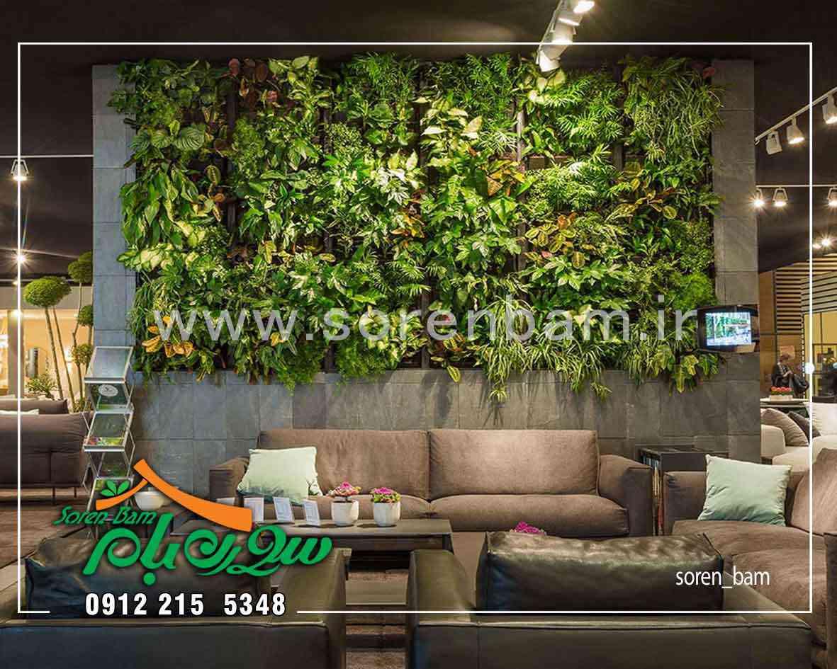 0 تا 100 اجرای دیوار سبز