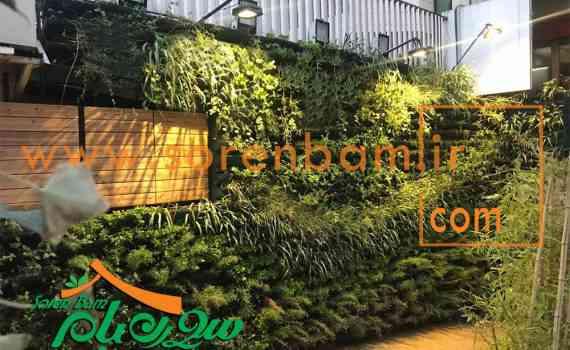 دیوار سبز فلورانس