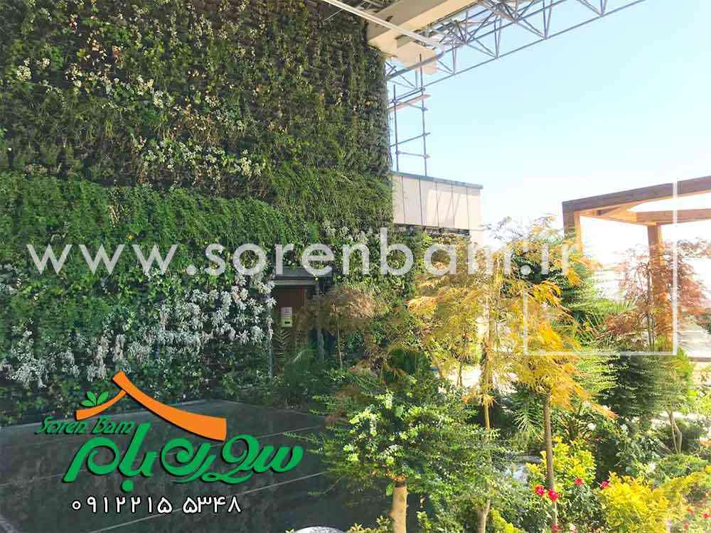 دیوار سبز در روف گاردن