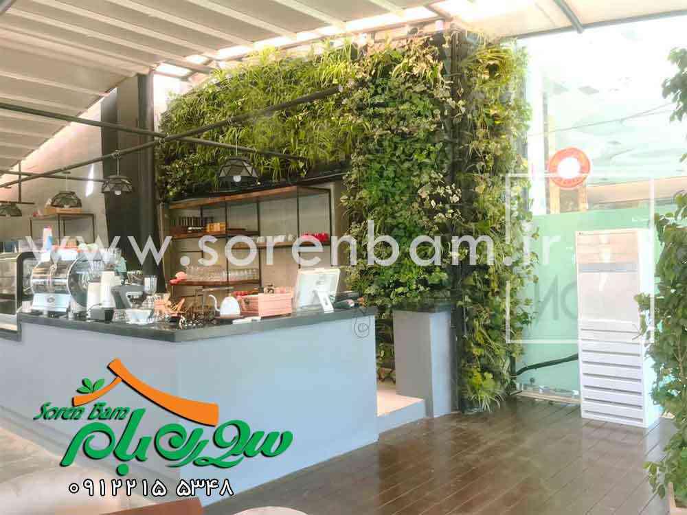 ساخت دیوار سبز و پوشش گیاهی