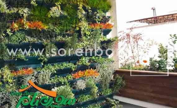 دیوار سبز تراس آصف