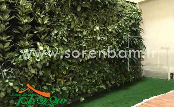 دیوار سبز شرکت لاله گستر