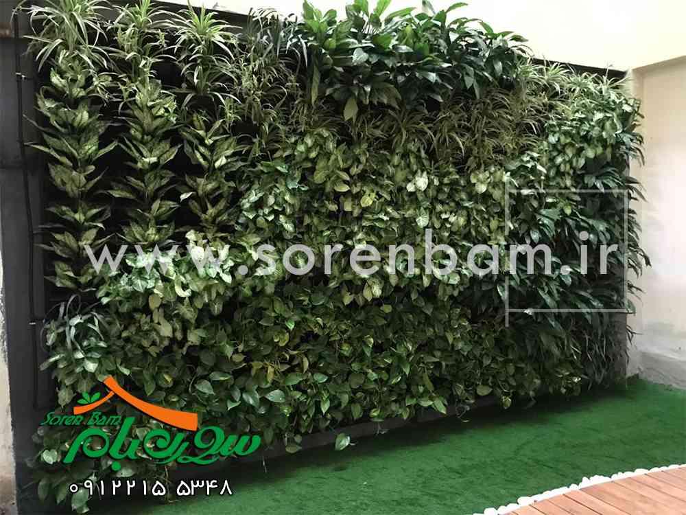 دیوار سبز ، طریقه ساخت