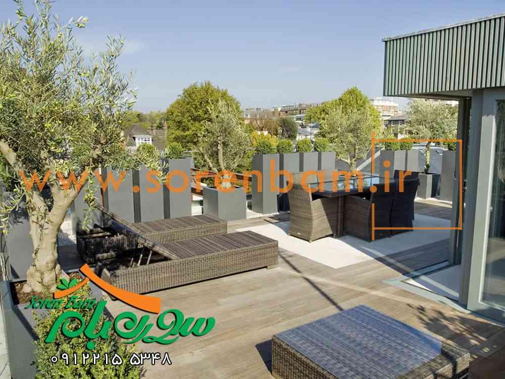 سقف سبز ، بام سبز