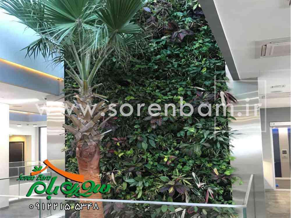 دیوار سبز و طریقه ساخت آن
