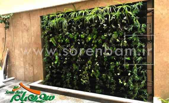 دیوار سبز پروژه پیروزی