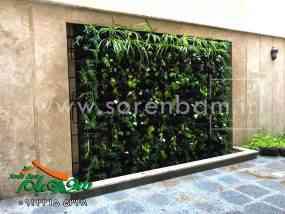 طراحی و اجراء دیوار سبز