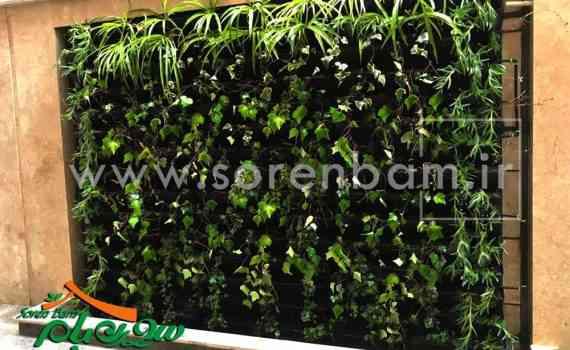دیوار سبز ،گلدان های دیوار سبز
