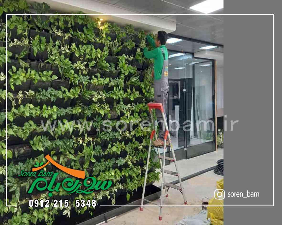 دیوار سبز صنایع غذایی کوروش